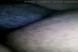 Xvideo com cruzamento de animal